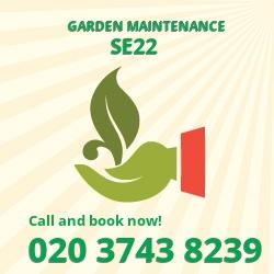SE22 patio lawn maintenance Dulwich