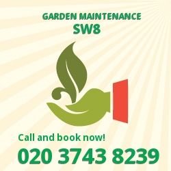 SW8 patio lawn maintenance Stockwell