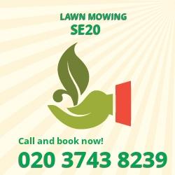 Penge cutting long grass SE20