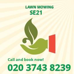West Dulwich cutting long grass SE21