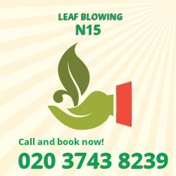 Tottenham Green leaf clearing equipment