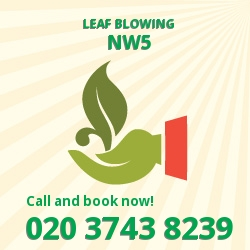 Chalk Farm leaf clearing equipment
