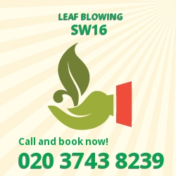 Streatham leaf clearing equipment