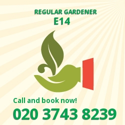 E14 reliable gardeners in Poplar