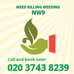 Welsh Harp weed removal service NW9