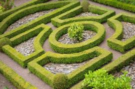 How to Plan and Create a Knot Garden