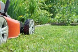 How To Care For Your Lawn In Fulham Like A Professional