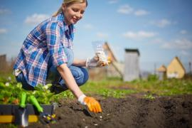 How To Save Money On Seeds In Kingston upon Thames