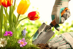 Keston garden maintenance BR2