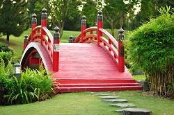 CR0 garden clearance Waddon