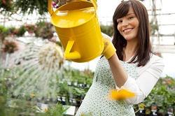 Bethnal Green weeding and pollarding E2