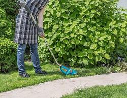 Hackney gardening services E9