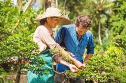 Queen's Park gardening services NW10