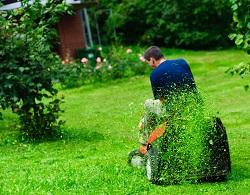 Noak Hill gardening services RM3