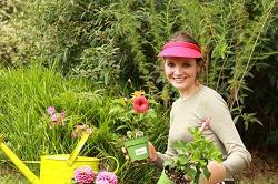 Peckham Rye weeding and pollarding SE15
