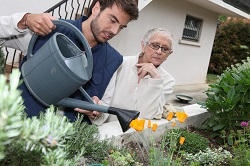 Morden gardening services SM4