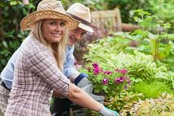 SE4 garden and grass care