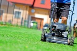 SW3 grass cutting Brompton