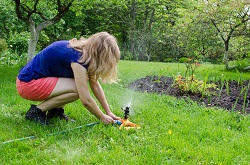 HA8 seeding a lawn Edgware