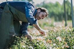 Egham regular gardener TW20