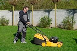 TW10 garden and grass care