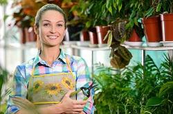 plant nursery UB7