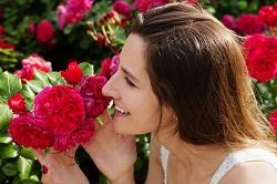 NW10 planting flowers Kensal Green
