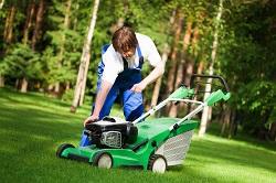 W5 grass cutting Lampton