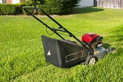 KT4 seeding a lawn Old Malden