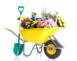 E14 lawn and garden care in Poplar