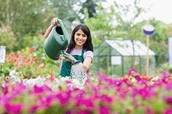 growing garden plants Ravenscourt Park