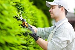 Shoreditch regular gardener EC2