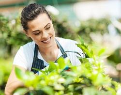 Upper Clapton regular gardener E5