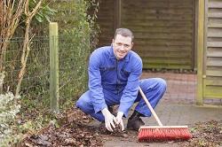 West Wickham garden tidy ups BR4