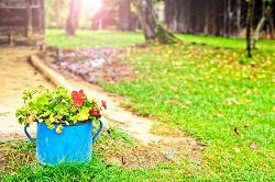landscapers & gardeners Woodford